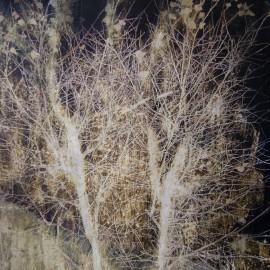 Dans une forêt froide – 2011 – 65×50 cm