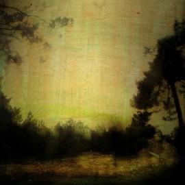Un lieu paisible – 2014 – 50×50 cm